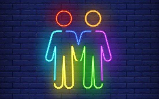 ddl zan coppia gay